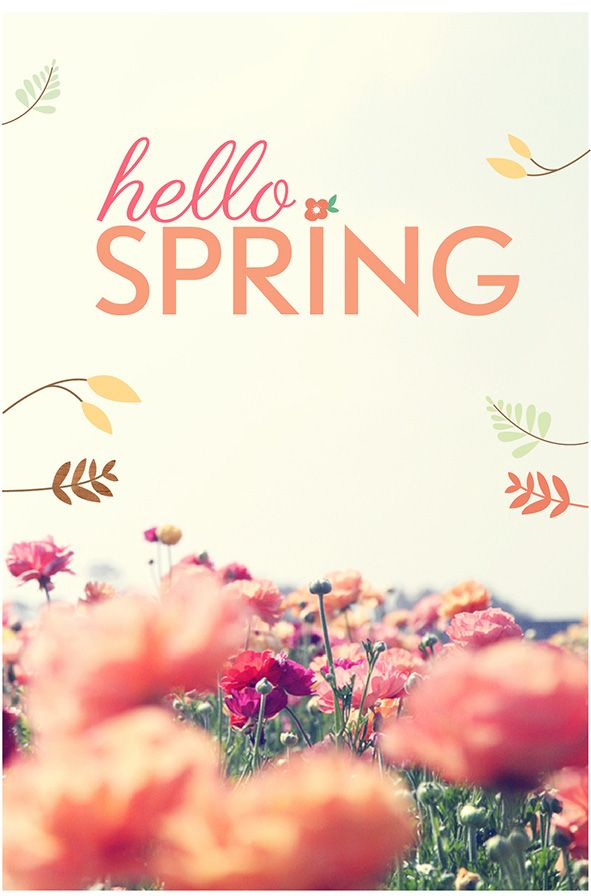 Hello Spring Adorn Gift And Home